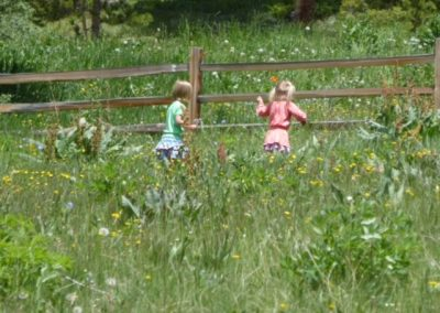 Kids picking wildflowers in the field above the picnic tables IMG_1333